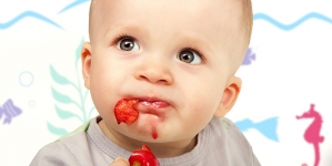 6 Tasty Cherry Purees You Can Make For Your Babies