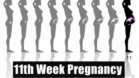 11th Week Pregnancy – Symptoms, Baby Development, Tips And Body Changes