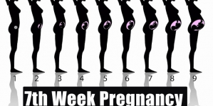 7th Week Pregnancy – Symptoms, Baby Development, Tips And Body Changes