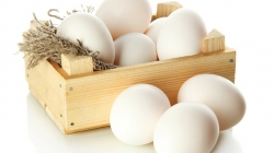 10 Best Health Benefits Of Eating Eggs For Kids
